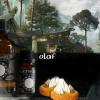 Olaf [Le Vinking Celte] Concentré