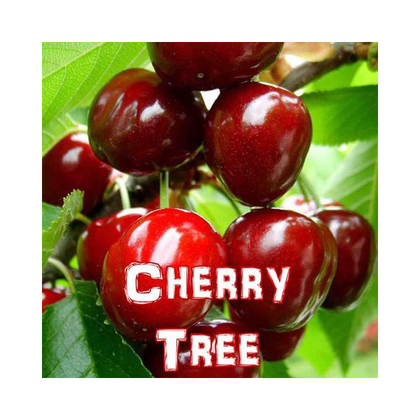 Cherry Tree [Vampire Vape]