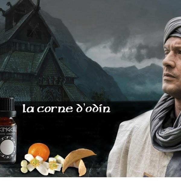 La Corne d'Odin [Le Viking Celte] Concentré