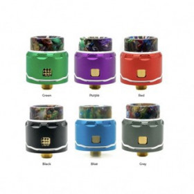C4 LP Single Coil RDA AsModus