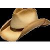 Classic Texas