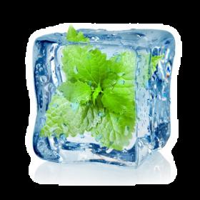 Menthol en Solution (Additif)